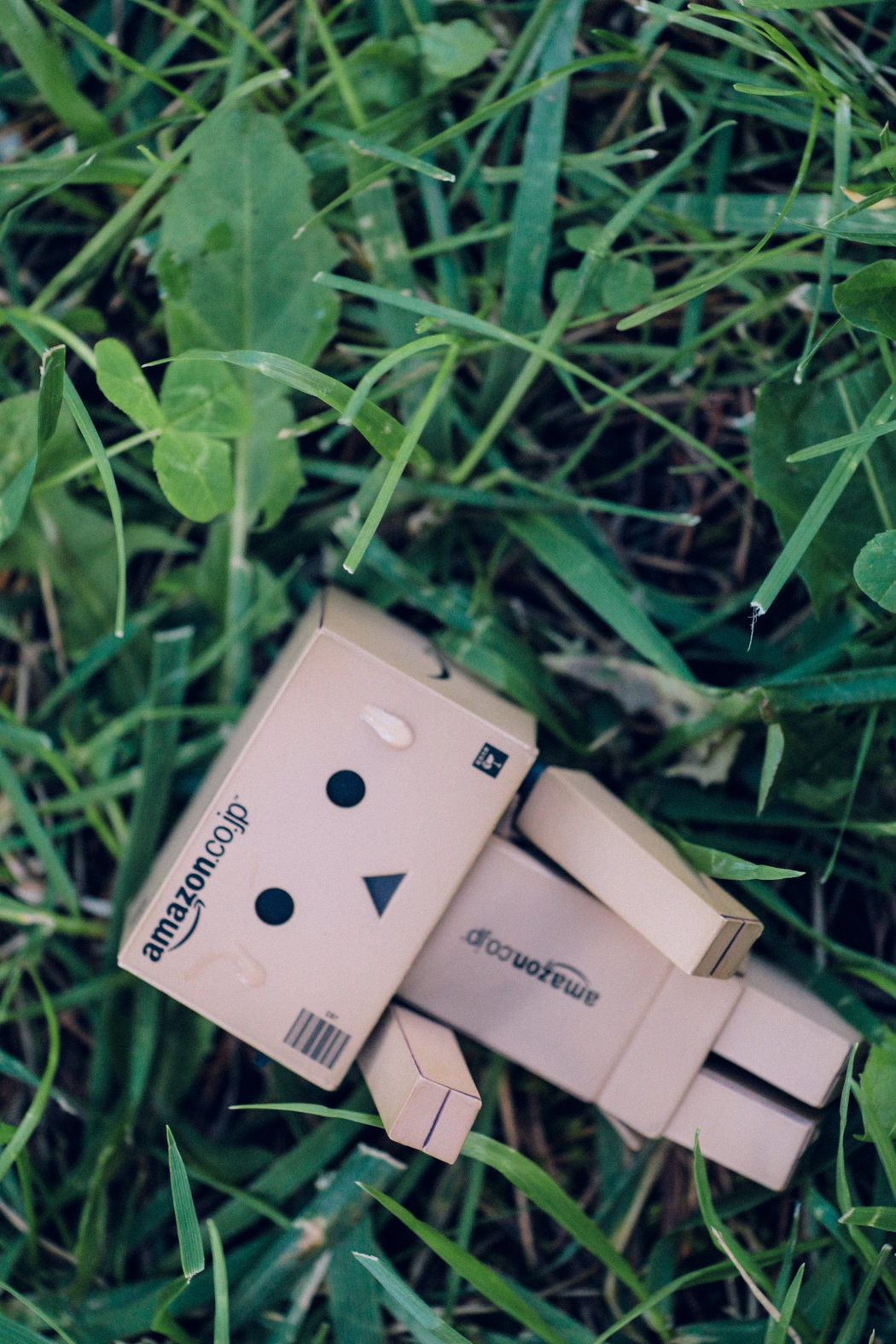 Pfff, what a hot day today! Danbo danboard